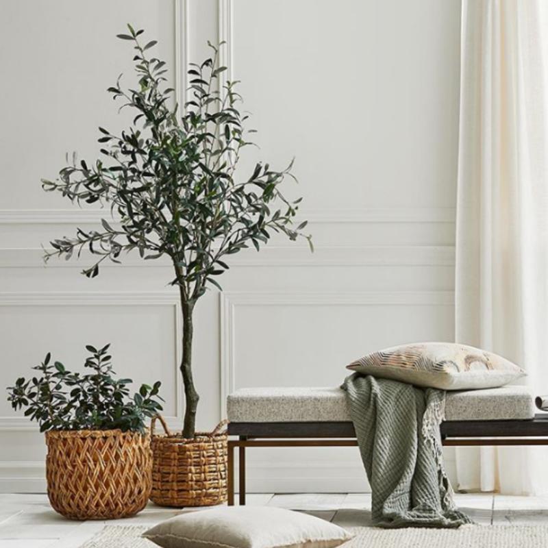 Fig Tree in Basket interior home decor